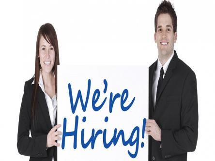 Get Full Time Job at Job Consultancy in Pune